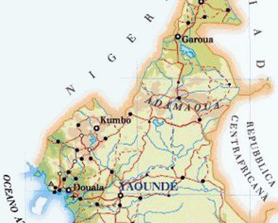 camerun movimento apostolico